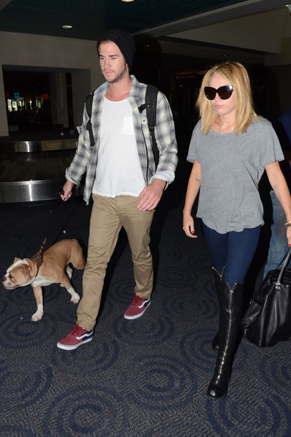 Liam Hemsworth and Miley Cyrus spotted taking dog iggy to start filming new movie Paranoia in Philadelphia