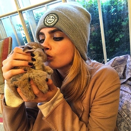 Cara Delevingne gets an adorable pet bunny rabbit - Cara Delevingne images - sugarscape.com