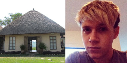 Things that look like One Direction singer Niall Horan's new hair - Images - Sugarscape.com
