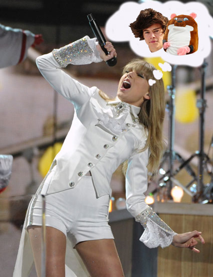 Forget Harry Styles, it's the secret behind what taylor Swift is actually singing about