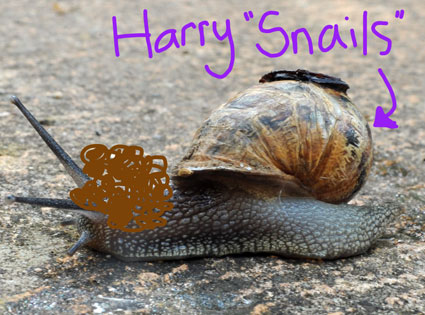 harry styles kisses like a snail