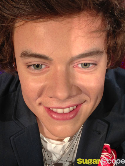 Harry styles wax face