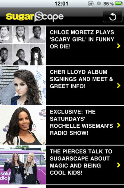 sugarscape screen shot