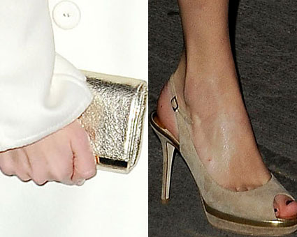taylor swift shoes bag