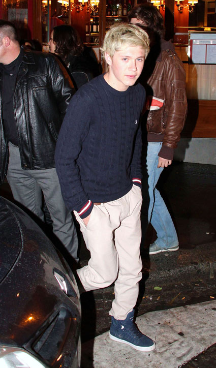niall horan from one direction in paris