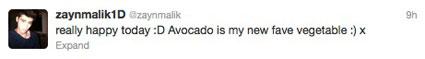 Zayn Malik tweets about avocados