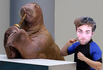 Robert Pattinson would have liked a Walrus involved in the breaking dawn part 2 sex scenes