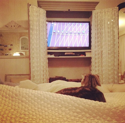 It's the week in celeb pics - Taylor Swift and her cat watch the Olympics