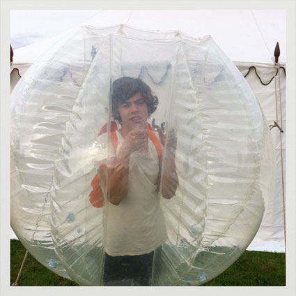 Harry Styles wants to be a hamster